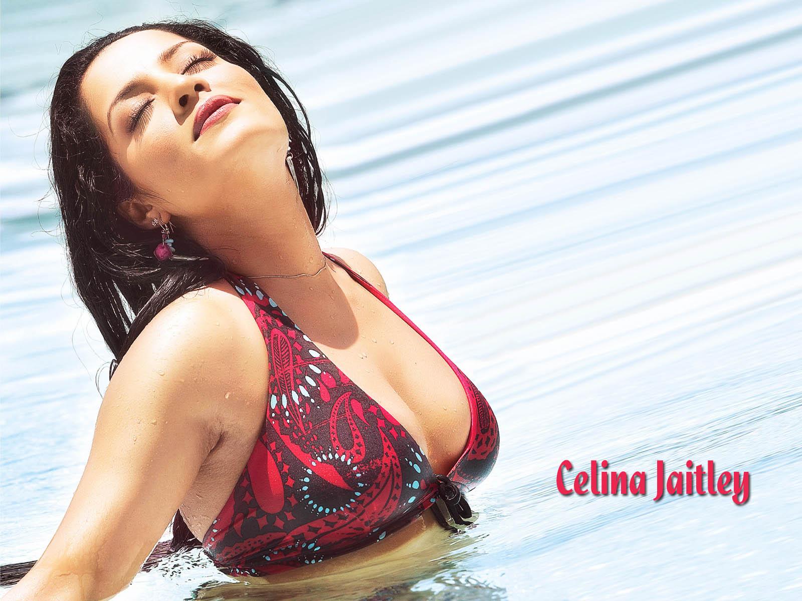 Celina jaitly sexy nude
