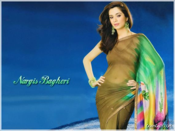 Nargis-Bagheri-hd-hot-saree-wallpapers
